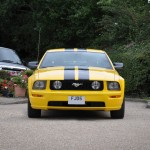 Mustang Screaming Yellow