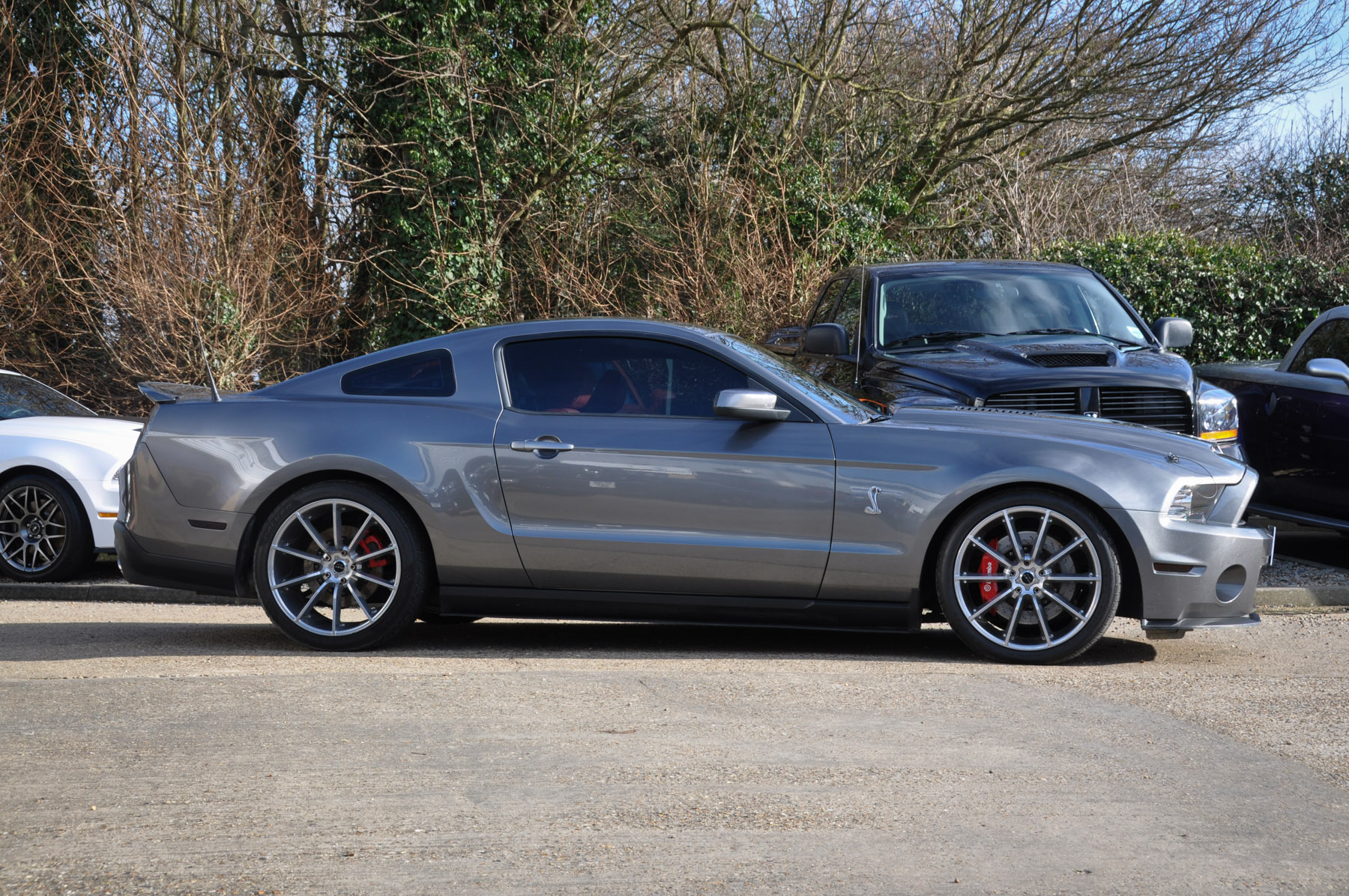 2010 59 Ford Mustang Gt500 Shelby